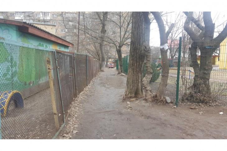 Стан даної доріжки наразі, вигляд зі сторони Гімназії №123.